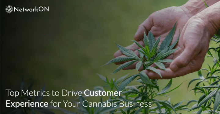 Top Metrics to Drive Customer Experience for Your Cannabis Business